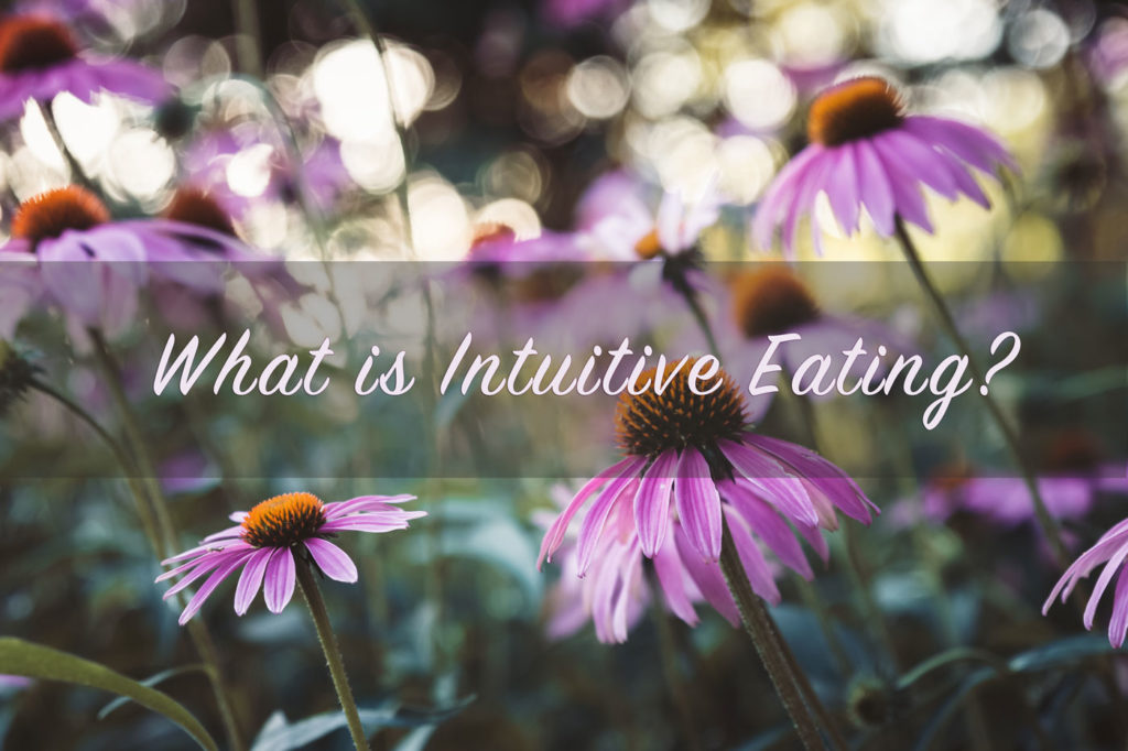 intuitive eating starkel nutrition seattle nutritionist