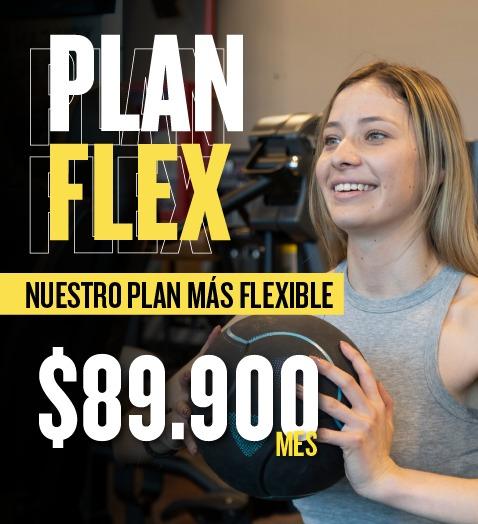 Banner-flex-2