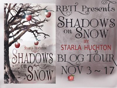 Shadows on Snow Blog Tour Banner