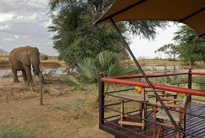 Ashnil-Samburu-–-Luxury-Camp8