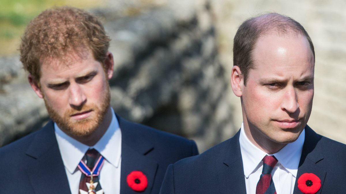Le prince Harry et le prince William : Leur brouille, une menace pour la monarchie ?