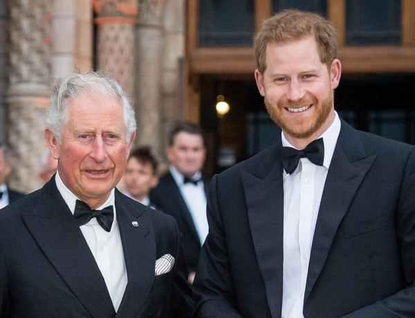Le prince Harry : Le prince Charles blessé par ces déclarations sur son fils