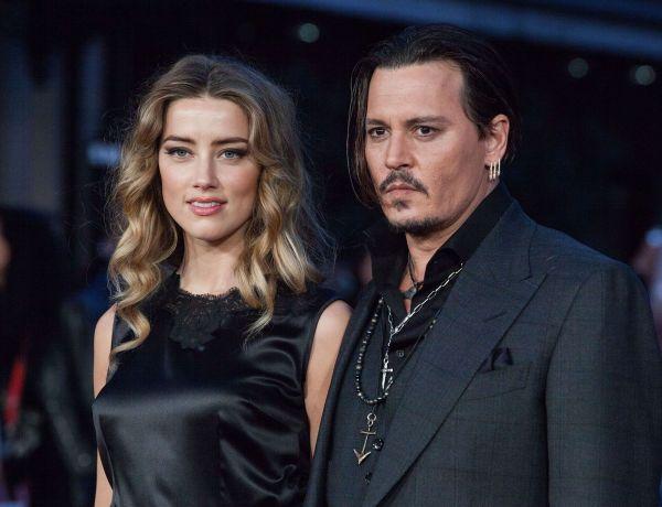 Amber Heard et Johnny Depp en guerre : bientôt un test ADN pour… les yorkshires ?