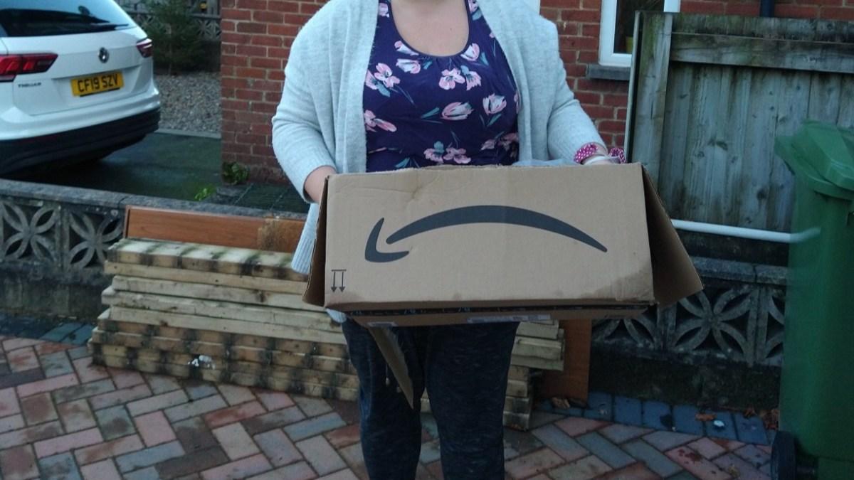 Pays de Galles : Une femme reçoit un cadeau de Noël commandé sur Internet pour son fils, il est rempli de souris !