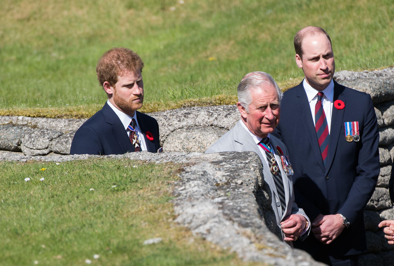 Les princes Harry, Charles et William