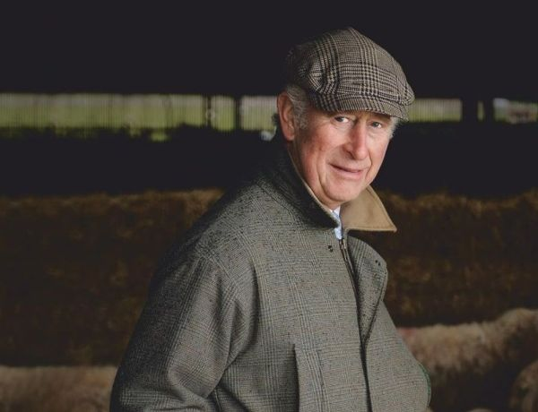Le prince Charles inapte à régner ? Certains observateurs le jugent incapable de prendre la relève