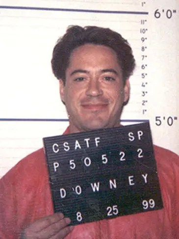 Robert Downey Jr. mugshot