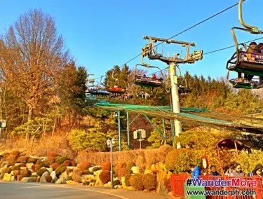 Everland Cable Car