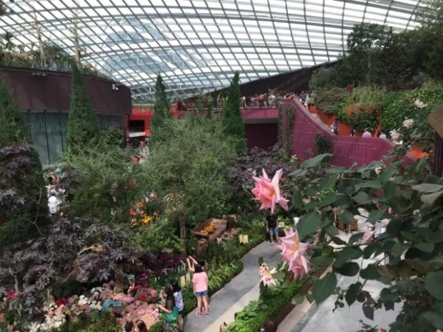 Flower Dome Inside