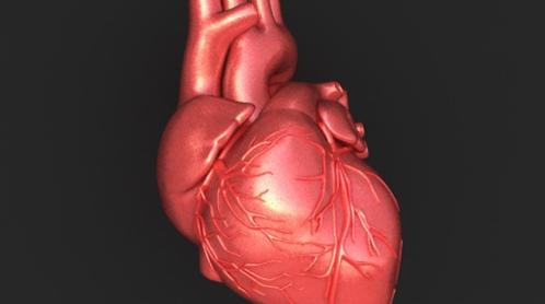 Salute: Cerotto bionico per curare il cuore dopo un infarto