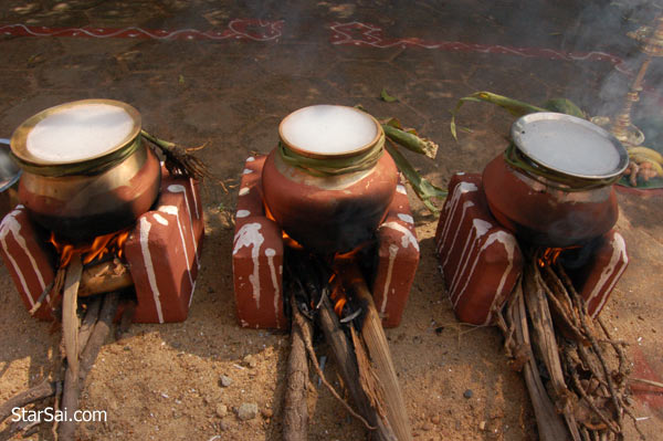 pongal cooking