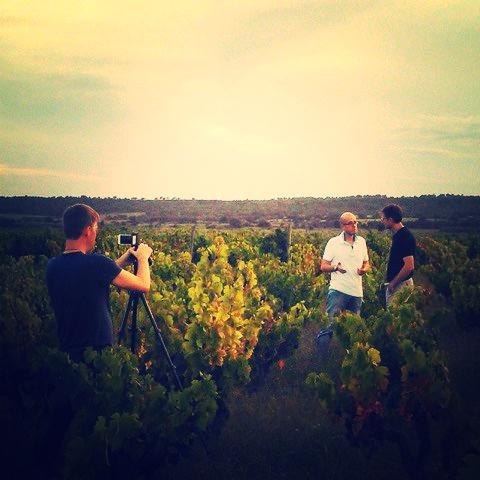 Catalunya wines