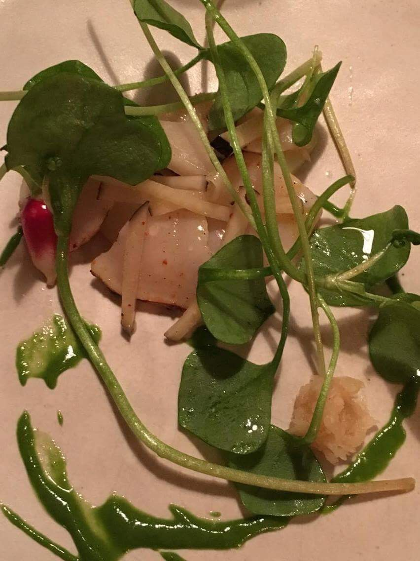 scallop-cooked-on-the-fire-winter-radishes-and-purslane_damien-bouchery