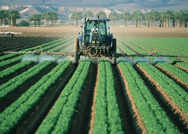 Je vais vous parler de la guerre de la nourriture verte entre les États-Unis et l'UE