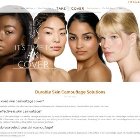 Take Cover Skin System