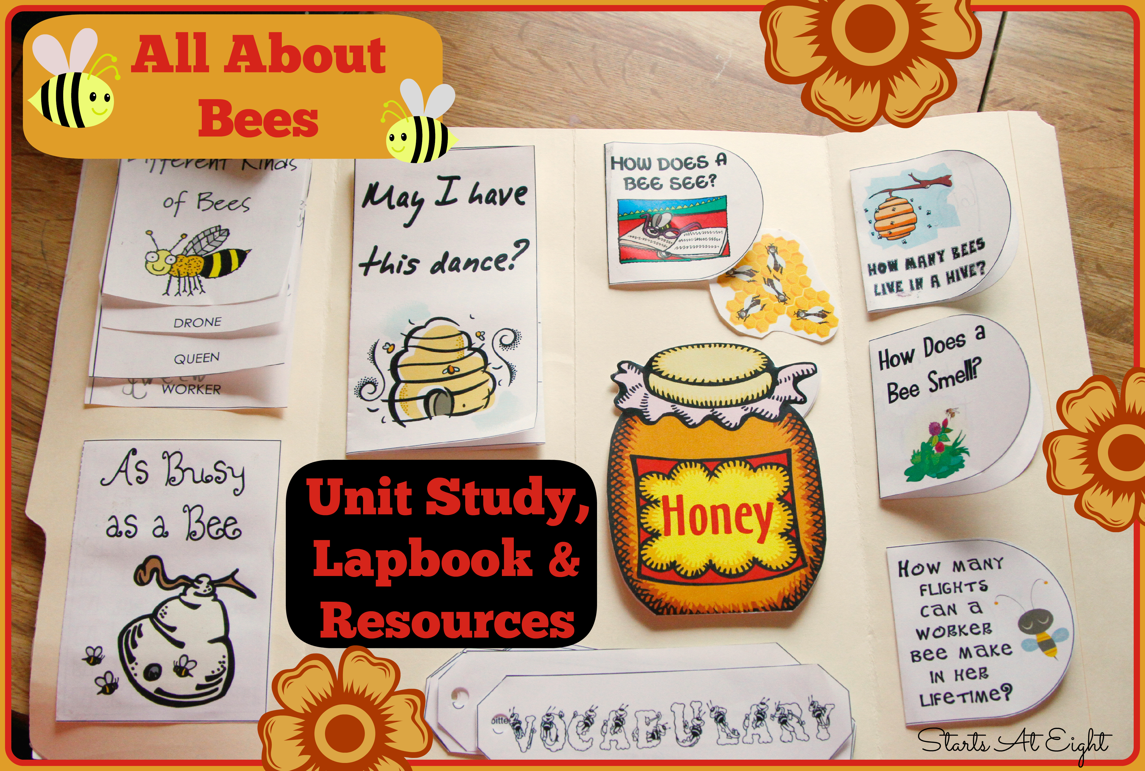 All About Bees Unit Study