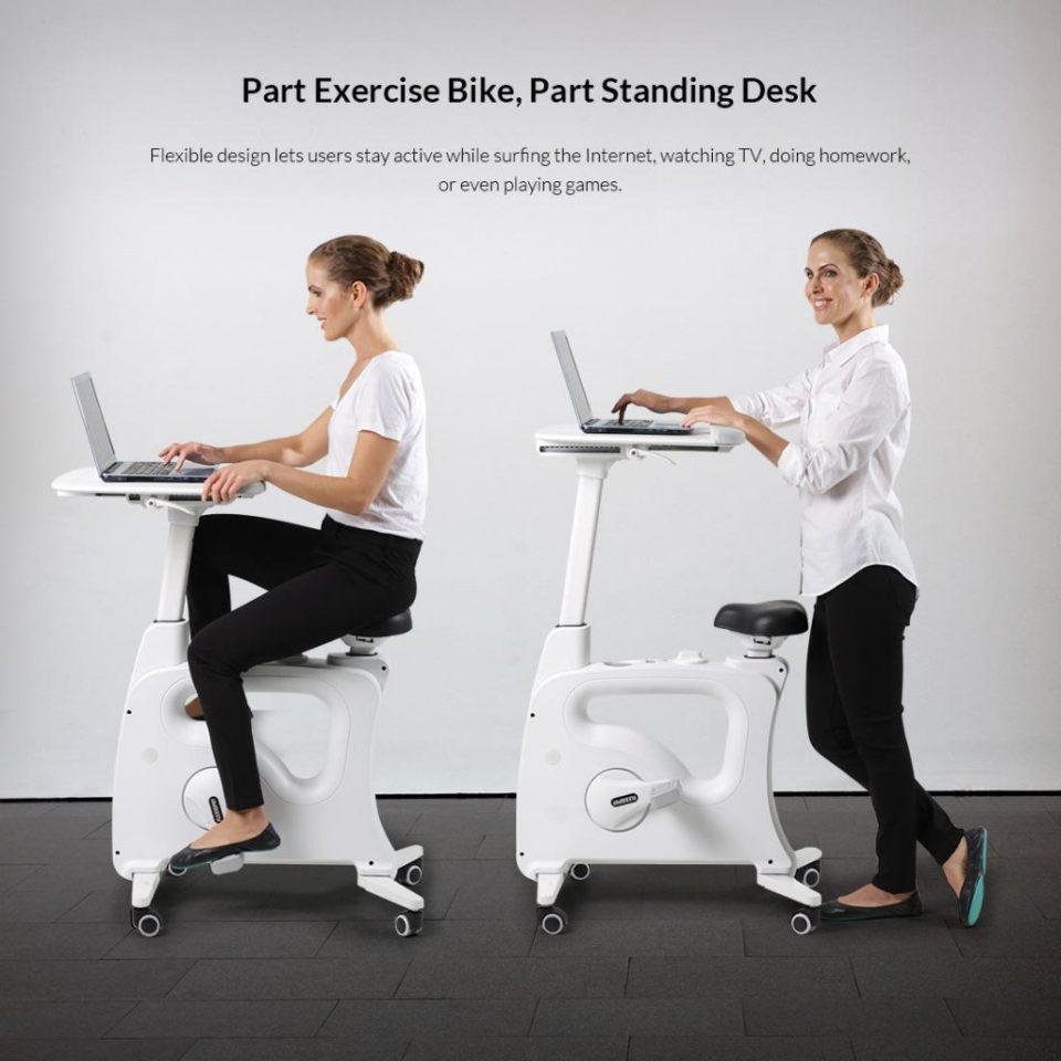 Flexispot Bike Desk