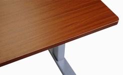 Flexispot Sanodesk Standing Desk Mahogany Top Detail