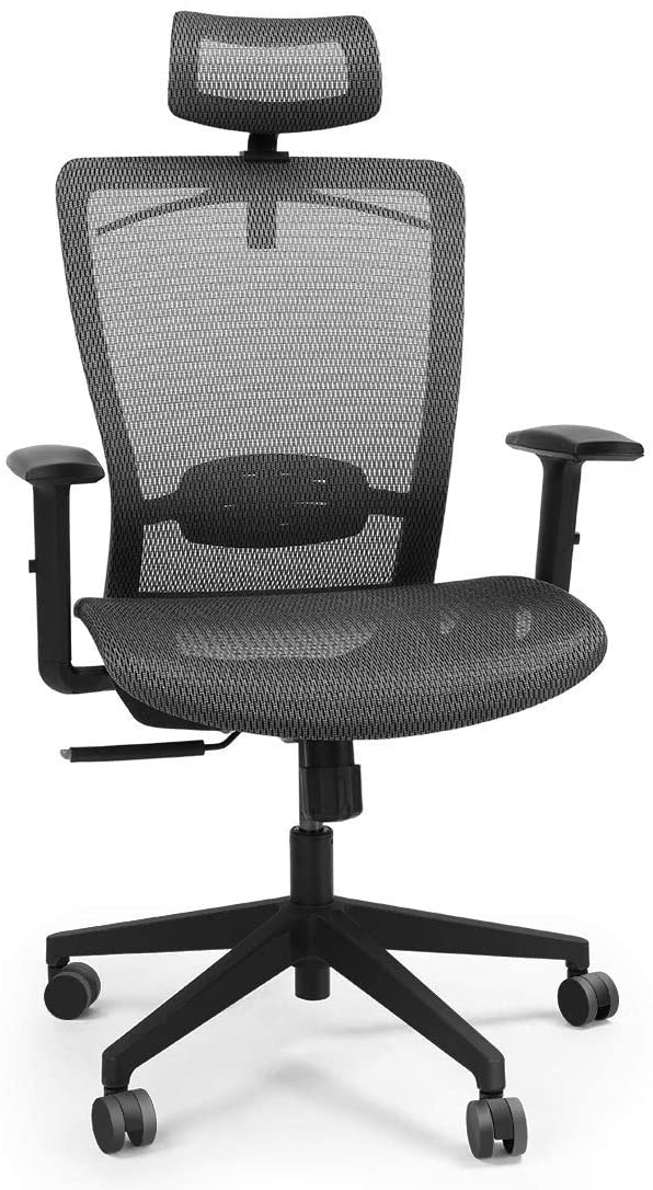 Flexispot OC3B Best Budget Chair for Comfort