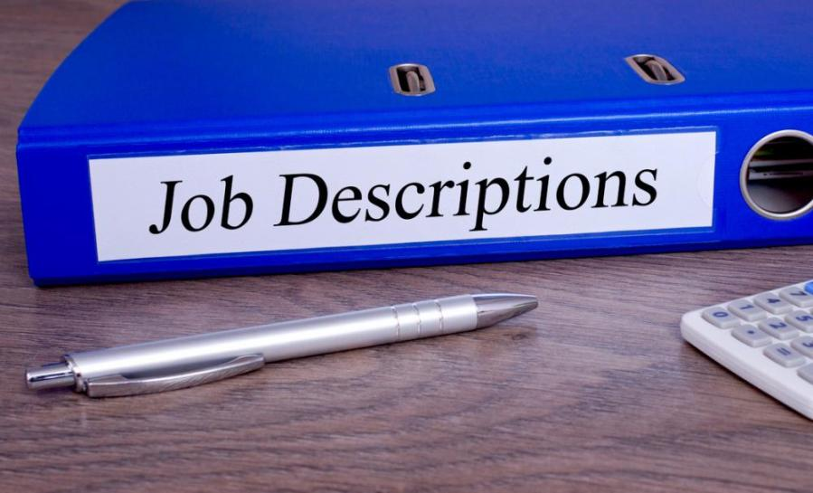 Job description template   Startup Donut Job description template