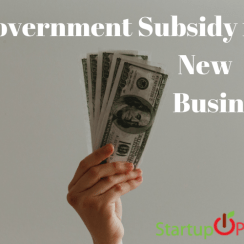 government subsidy for new business