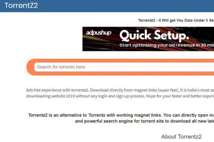 Torrent Download Sites