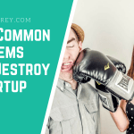 Most Common Problems that Destroy a Startup - Startup Storey Entrepreneur Guide