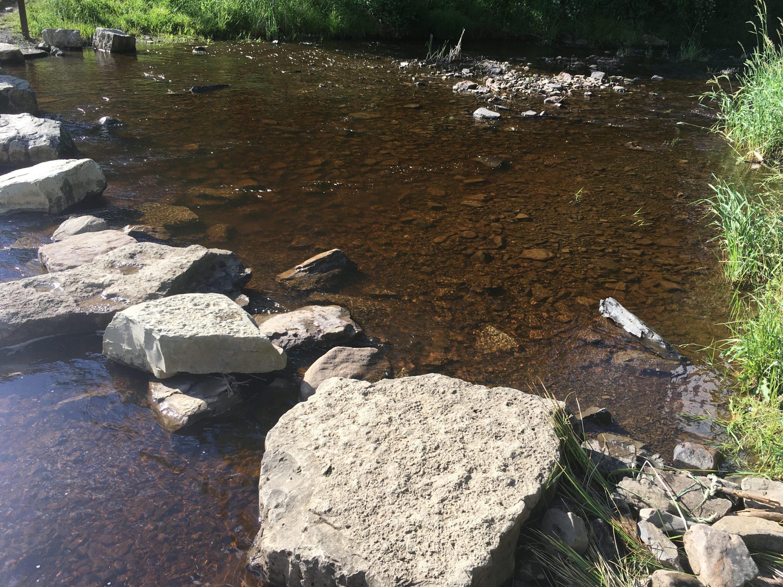 """""""Water Rocks,"""" Lacey (Troop 40429)"""