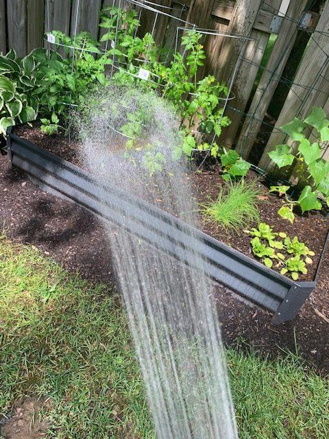 """""""Water Garden,"""" Ruby (Troop 40421)"""