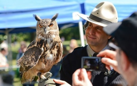 a park ranger holds up an owl for a visitor to take a photo