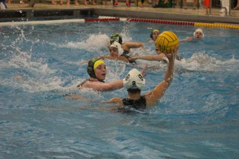 Water Polo State Finals