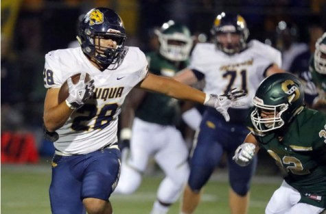 Neuqua Valley Nixes Stevenson As Patriots Lose Home Opener 28-21