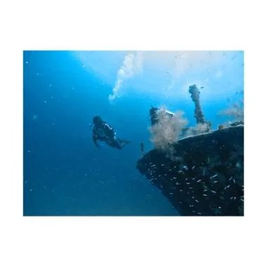 Paket Diving Maldives Maafushi Pake ... nasional [4D3N / 6 Dives]