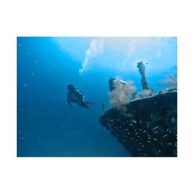 Paket Diving Maldives Maafushi Pake ... nasional [4D3N / 6 Dives]