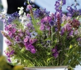 statice sfeerbeelden voor in boeket. voor #bloemist #zomerbloem