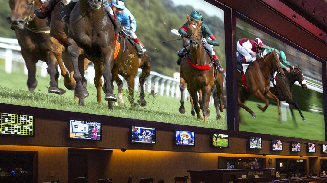 a photo of the race and sports book with horse racing on the screen