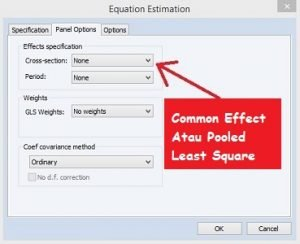 Common Effect Regresi Data Panel dengan Eviews