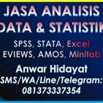 Jasa Olah Data Statistikian Anwar