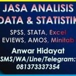 Jasa Olah Data Statistikian Anwar Hidayat