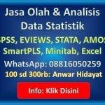 jasa analisis data statistikian 2018