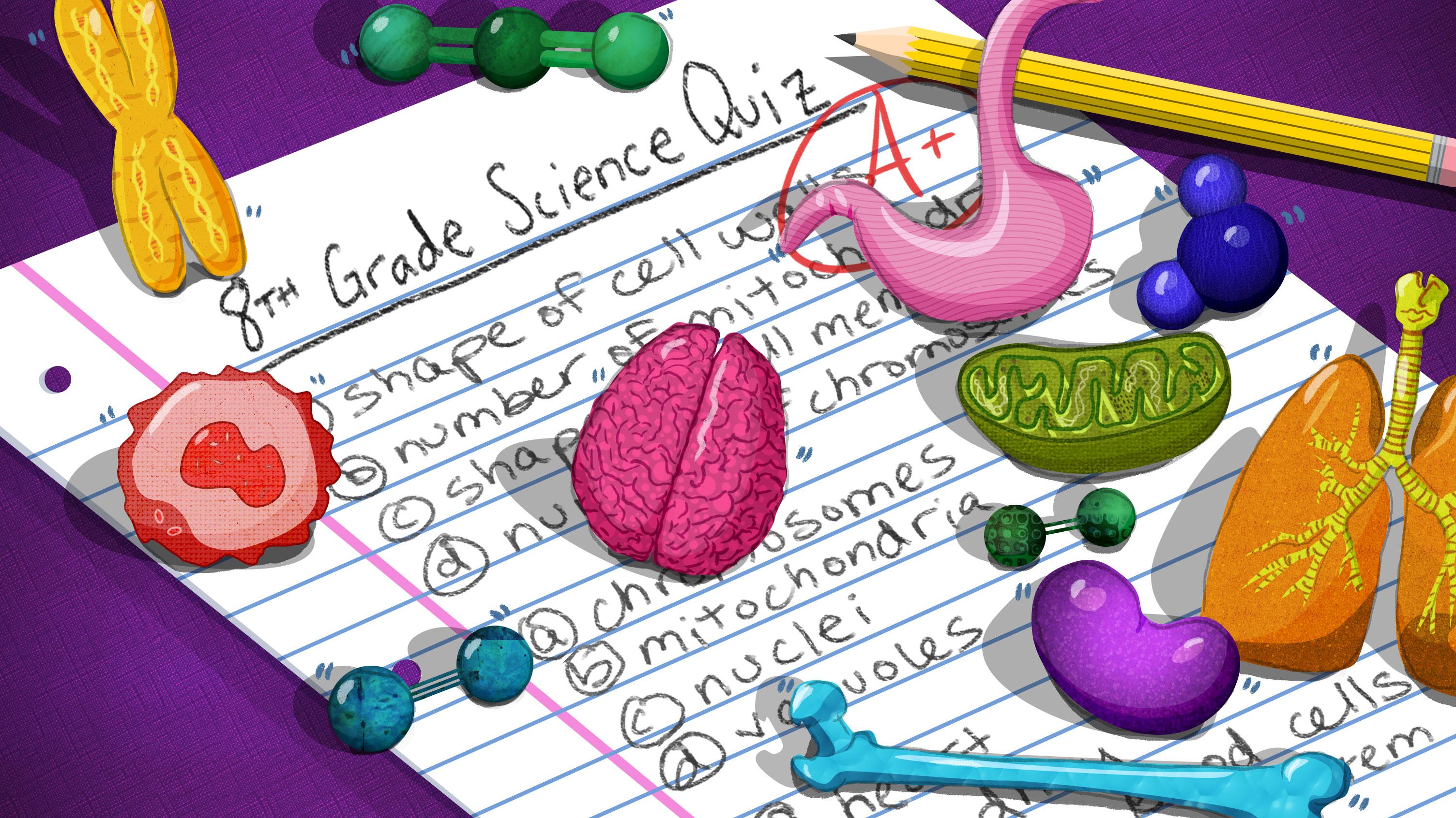 Virginia 8th Grade Science Test