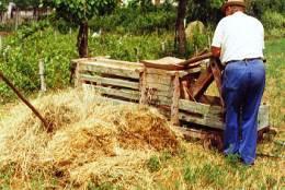 Falsi braccianti agricoli (immagine d'archivio)