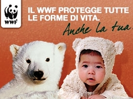 Donazione 5 per mille Wwf Foggia