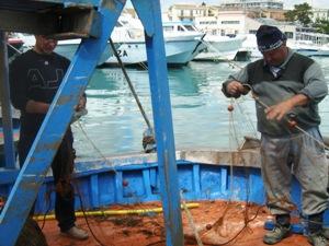 Pescatori di Manfredonia (image copyright Statoquotidiano, archivio - immagine non riferita al testo)
