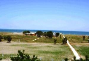 Area Ippocampo (immagine d'archivio)