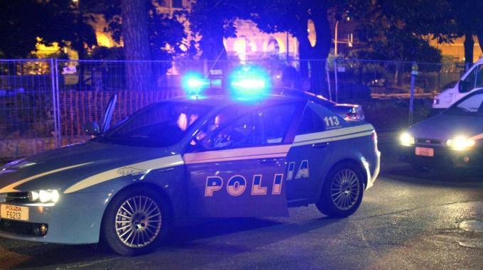 Polizia, controlli Immagine d'archivio - (archivio: ilrestodelcarlino.net))