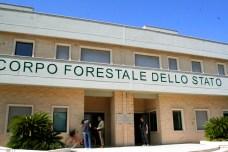 Conferenza forestale3