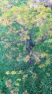 exNAUTICO-manfredonia-27112014 (43)