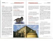 programmacoalizionecentrosinistra-manfredonia2010 (1)