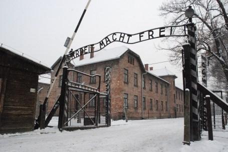 Auschwitz oggi_2